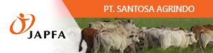 Lowongan Kerja PT. SANTOSA AGRINDO 2018